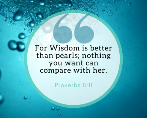 For wisdom is better than pearls; nothing you want can compare with her. Proverbs 8:11